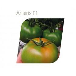 ANAIRIS